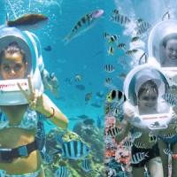 Voucher Wisata Tour & Travel - SeaWalker