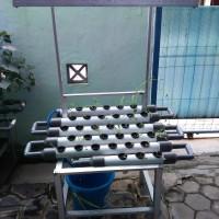 Jual Kebun Set Mini Garden Hidroponik/ Taman Mini Peralon Pot Hydroponic Murah