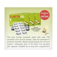 Lacto GG Probiotic - Lactobacillus