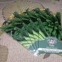 Benih Kale Nero di Toscana Mr.Fothergill's, original packing