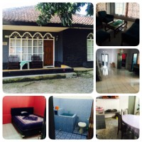 hotel,losmen,home stay