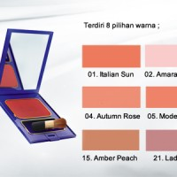 Inez Color Contour Plus Brusher with Brush - Blush On
