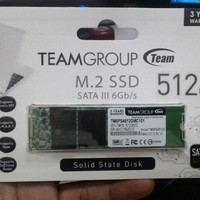 TEAM SSD MSATA M2 / M.2 512GB (TM8PS4512GMC101)