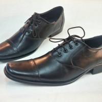 harga Sepatu kulit Pantofel Pierre Cardin D-092 Tokopedia.com