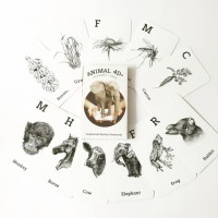 Animal 4d+ by Octagon Studio (Free Feeding Cards)