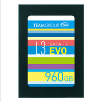 Team T253LE960GTC103 L3 EVO - 960GB