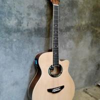 GitarAkustik APX Natural + LCD Prener AW5 Super Exclusive