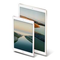 iPad Pro Mini 9.7