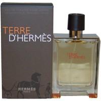 Parfum Hermes, Terre D Hermes Man Edt 100 Ml (Original)