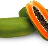 60 Biji Benih Unggul Pepaya Calina California Bibit Carica Papaya