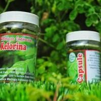 moringa (kapsul)/bubuk daun kelor