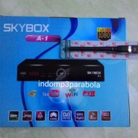 Skybox A1 + Wifi Dongle