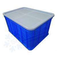 Container Serbaguna | Box Plastik | Multipurpose Container