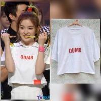 harga Tshirt Kaos Croptee Crop Tee Top RED VELVET IRENE DUMB DUMB Kpop Tokopedia.com