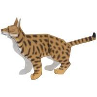 Harga Kucing Bengal DaftarHarga.Pw