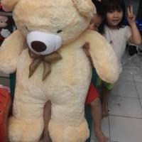 Jual BONEKA TEDDY BEAR / COSY JUMBO 100CM Murah