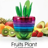 Harga 10 In 1 Fruits Plant Travelbon.com