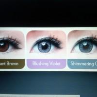 Softlens Warna Harian Freshkon Color Fusion 1Day HA+UV Brilliant Brown