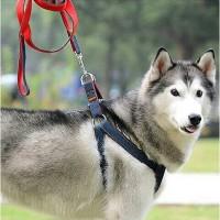 Dog Harness Leash Tali Anjing Besar