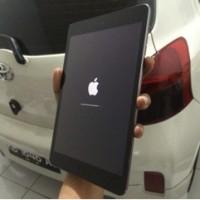 iPad mini 2 celluler 4G + wifi fullset