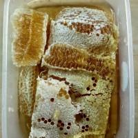 Jual Madu Sarang | Sarang Lebah | Sarang Madu Murah
