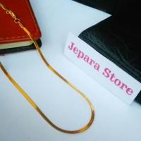 harga Exclusive Kalung Titanium Stainless 316L Gold Slim Pipih Kuning Emas Tokopedia.com