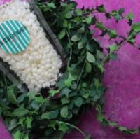 Jual 100gr milk hard beads wax ( non strip waxing ) Murah