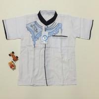 Jual Baju koko anak warna putih bordir ukuran 6 LD74 PB45 Murah