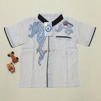 Jual Baju koko anak warna putih bordir ukuran 7 LD76 PB46 Murah