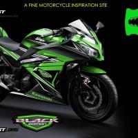 Ninja 250R fi - Green Edition