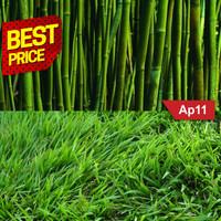 Alas / Background Foto A3+ | Grass Bamboo | AP11
