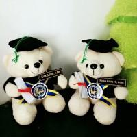 harga Boneka Wisuda Bear Duduk Imut 22 Cm - Putih Tokopedia.com
