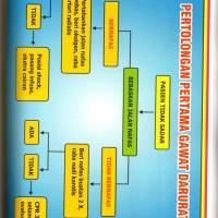 harga Poster Pertolongan Pertama Gawat Darurat Tokopedia.com