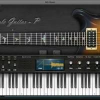 Ample Sound Guitar AGP