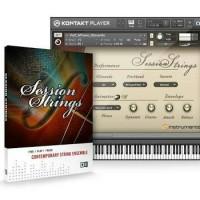 N.I. Session Strings