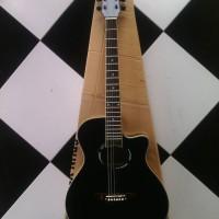 Gitar model yamaha apx 500i custome