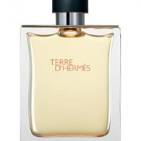 ORI REJECT HERMES TERRE D'HERMES FOR MAN 100ML ( PARFUM NO BOX )
