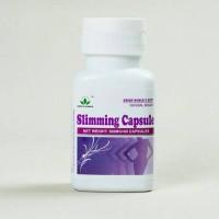 PELANGSING/DIET/SLIMMING CAPSULE GREEN WORLD ISI 60