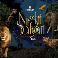 Night Safari (tiket anak)