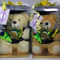 Jual Boneka Wisuda 25cm Nama Selempang+Bunga Murah