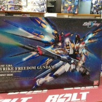 PG Strike Freedom Gundam