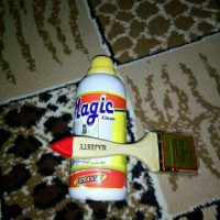 magic clean pembersih closet +kuas
