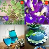 Bunga Telang / Kembang Telang Pewarna Makanan Alami