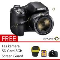 SONY Cyber-shot DSC-H300 Free Antigores+Case   Sony camera pocket