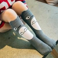 Kaos kaki anak lutut lucu TOTORO LY106 kid knee socks