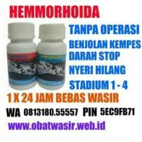 obat wasir ambeien, berdarah, tradisional, alami, ampuh, luar apotik