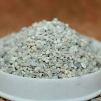 Silica Coarse Sand Micro for Landscape, Terrarium /Pasir Silika Kasar