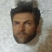 hot toys wolverine headsculpt