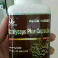 CORDYCEPS PLUS CAPSULE GREEN WORLD/OBAT TBC/ASMA/PEROKOK/BRONKHITIS