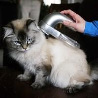 Portable Electric Pet Fur Suction Device / Pembersih Bulu Peliharaan